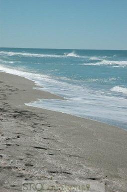 beach-29