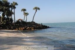 beach-48