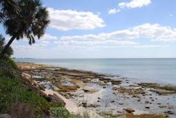 beach-591