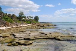 beach-611