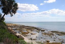 beach-featured