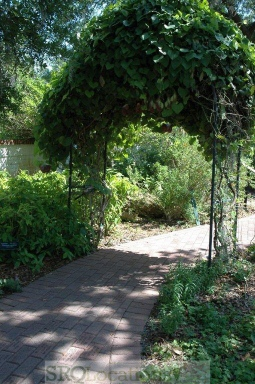 gardens-and-pathways-10