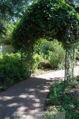 gardens-and-pathways-10