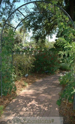 gardens-and-pathways-11