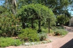 gardens-and-pathways-12