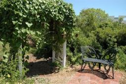 gardens-and-pathways-16