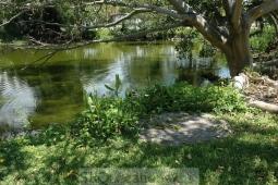 gardens-and-pathways-18
