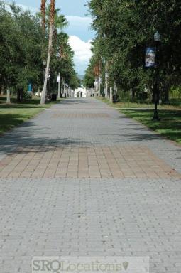 new-college-3