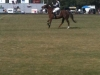 polo-fields-1