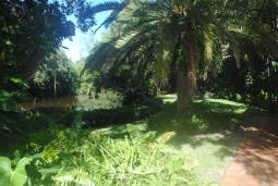 Santa-Fe-sarasota-DSC_0209.jpg