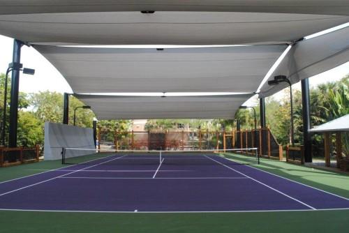 Amazing Court