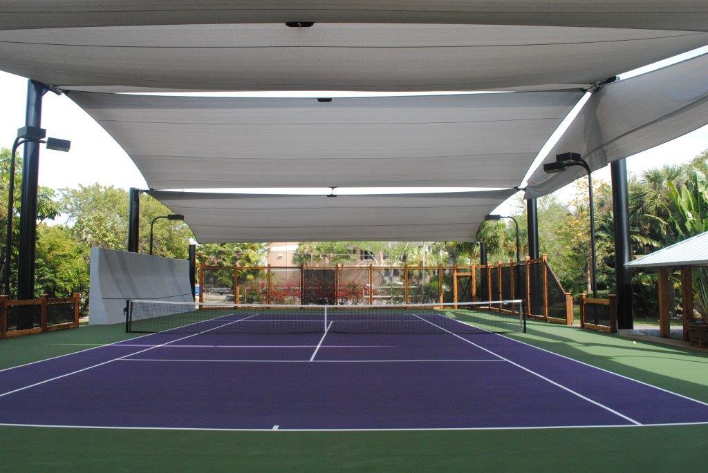 Amazing Court (6)